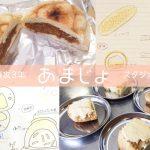 スタジオ報告会②あまじょ(家政学専攻)