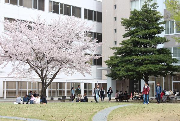 4月のキャンパス