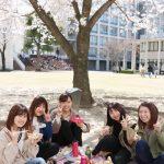 桜満開!お昼休みの風景を紹介♪